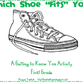 which-shoe