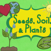 Seeds-Soil-and-Plants