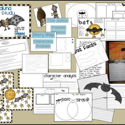 Bats, Stellaluna, and Visual Plans!
