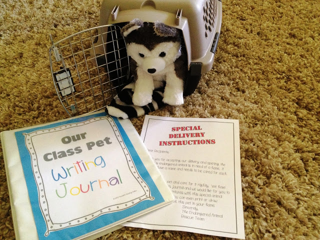 Class Pet Writing Journal - Tunstall's Teaching Tidbits