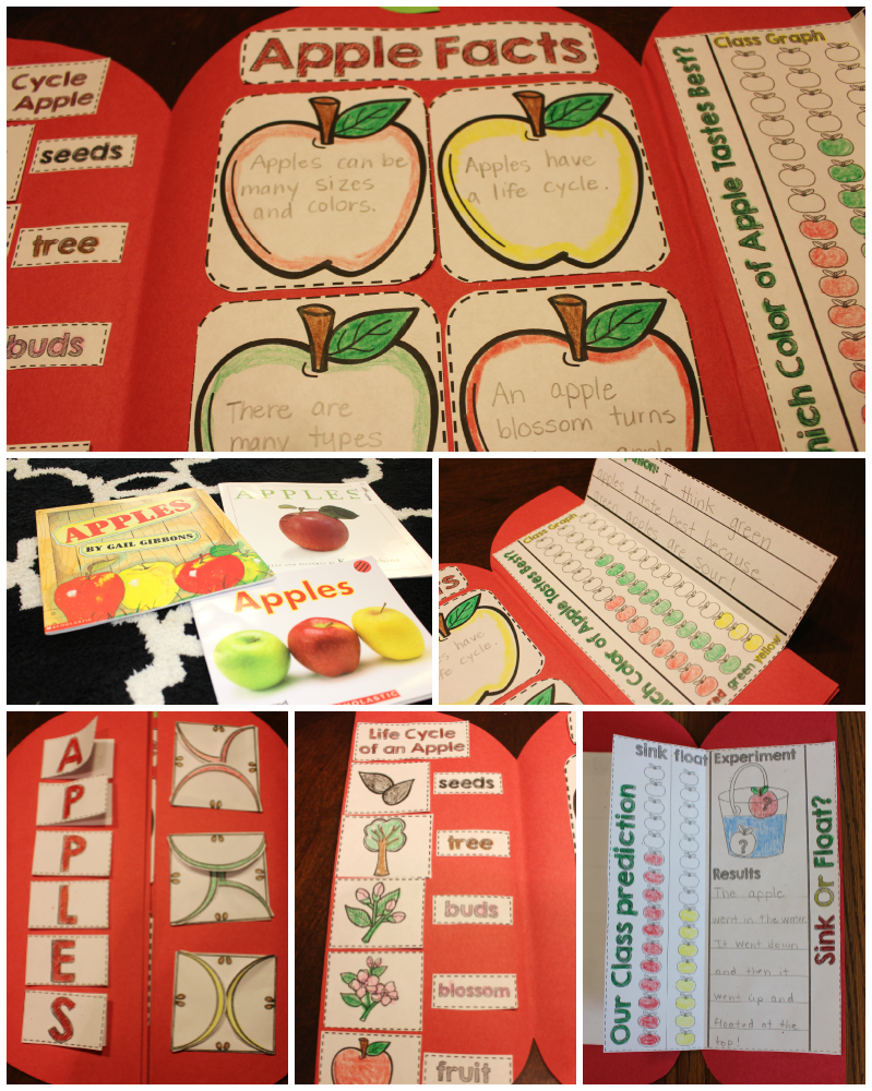 http://www.teacherspayteachers.com/Product/Apple-Science-Interactive-Activities-1444752