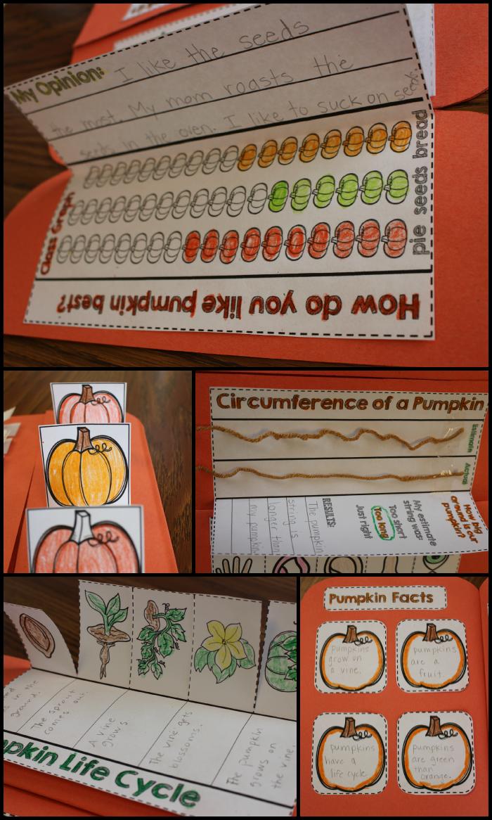http://www.teacherspayteachers.com/Product/Pumpkin-Science-Interactive-Activities-1452204