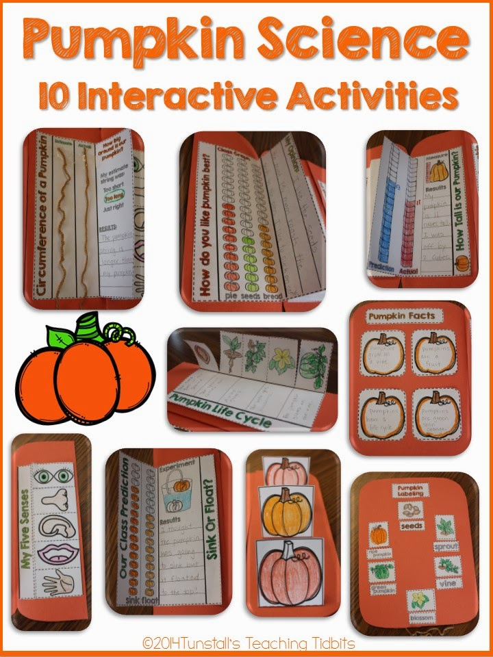 http://www.teacherspayteachers.com/Product/Pumpkin-Science-Interactive-Activities-1452204