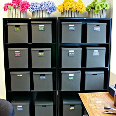Organizing the Elementary Classroom!