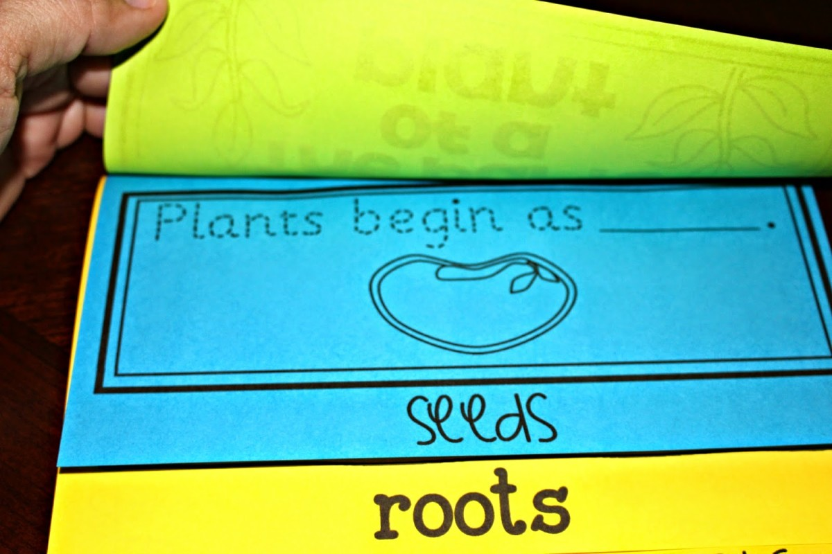 https://www.teacherspayteachers.com/Product/The-Parts-of-Plant-Flip-Up-Book-1295414