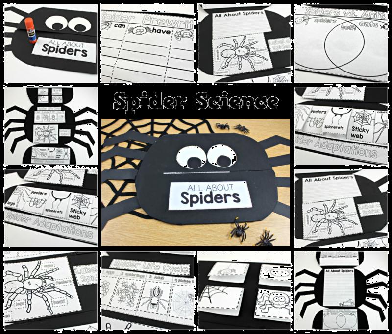 spider-science