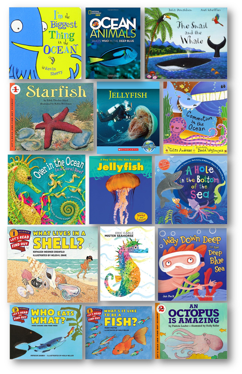 ocean unit measurement kindergarten ebook
