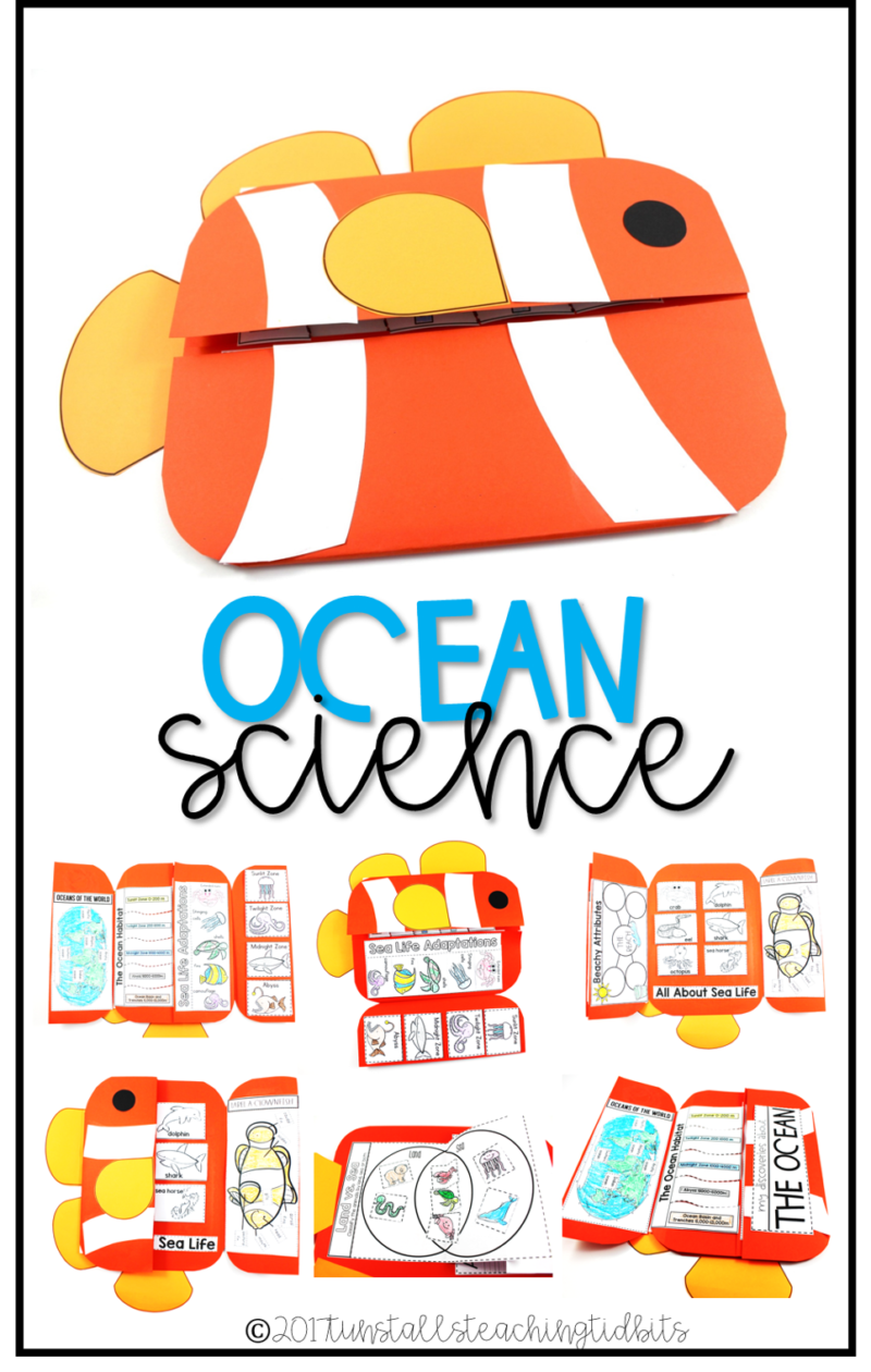 ocean science interactive science book for kindergarten, first grade, second grade