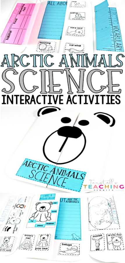 Arctic Animals Science A science unit that covers arctic animals. Students learn about the animals, their adaptations, their habitats, and more!