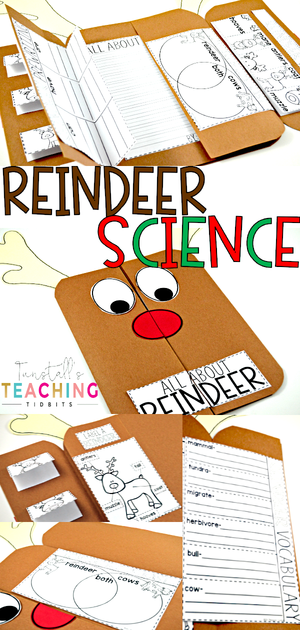 Reindeer Science Learn all about reindeer and caribou with this non-fiction holiday science flip book! Learn reindeer facts, attributes, true/false statements, and write all about reindeer. An integrated unit that ties whimsical with real-life.