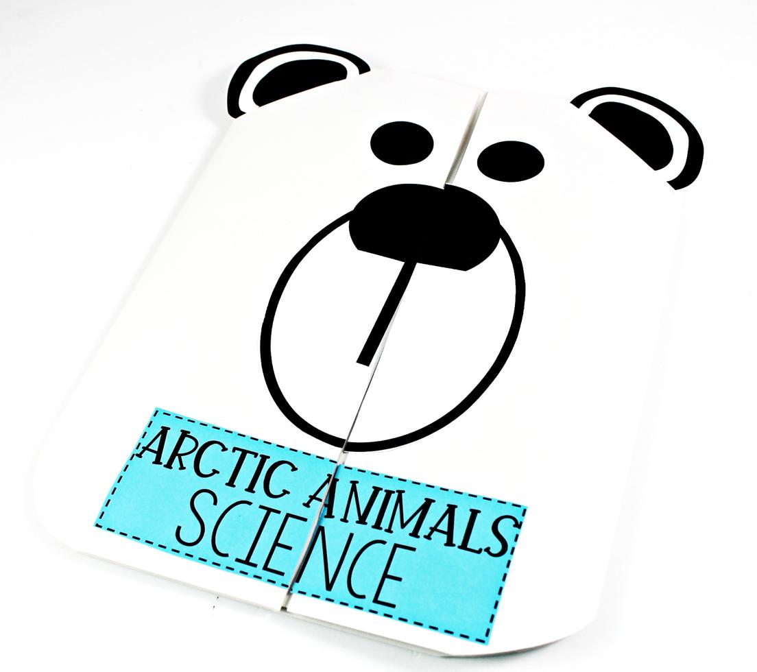 polar bear January Themes