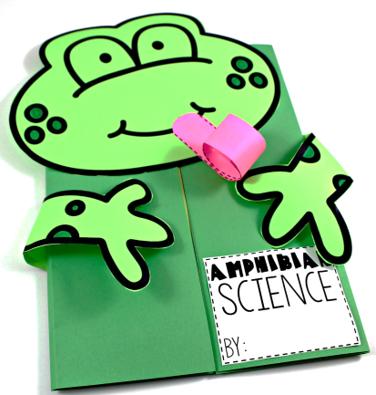 Frog Science Summer Science