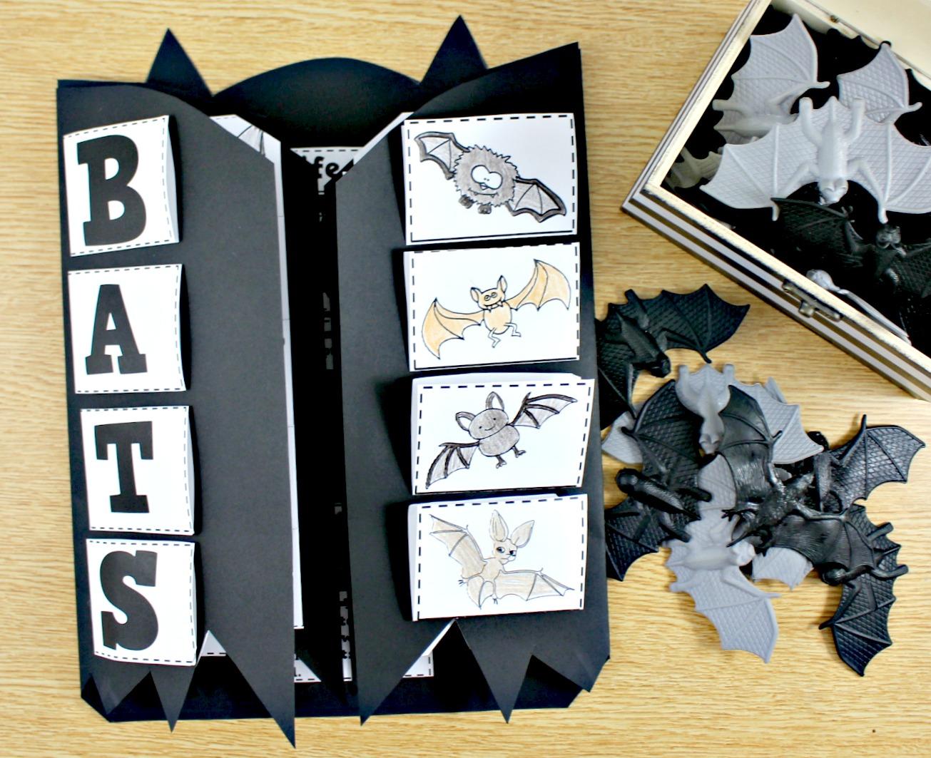 bat science